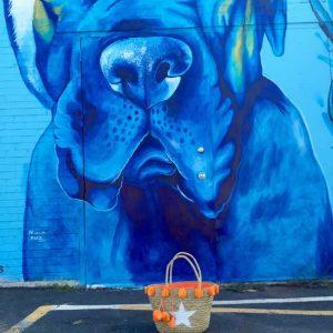 Orange Straw Star Bag Blue Dog